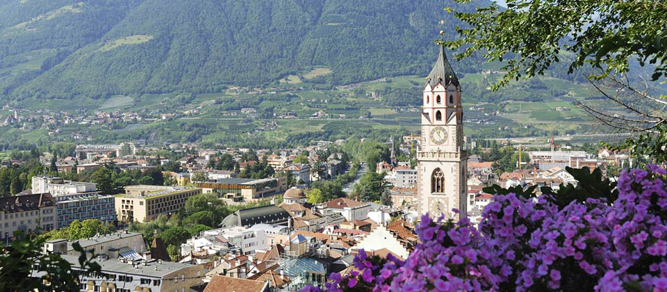 A nice view of a church of Merano in South Tyrol surrounded by violet flowers