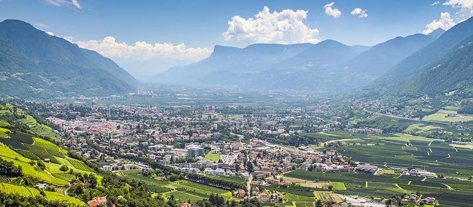 View from above of Merano and surroundings during summer