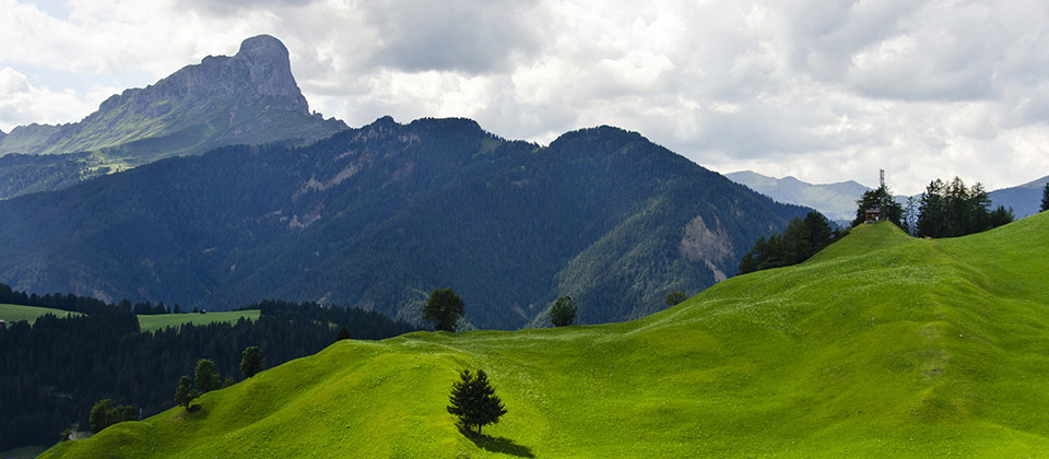 A shiny greenfield looking at the Sass de Putia mountain chain in Val Pusteria