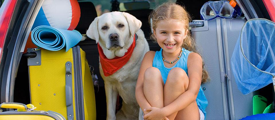 Ein Mädchen und ihr Hund im Kofferraum eines vollgeladenen Autos bereit zum Urlaub